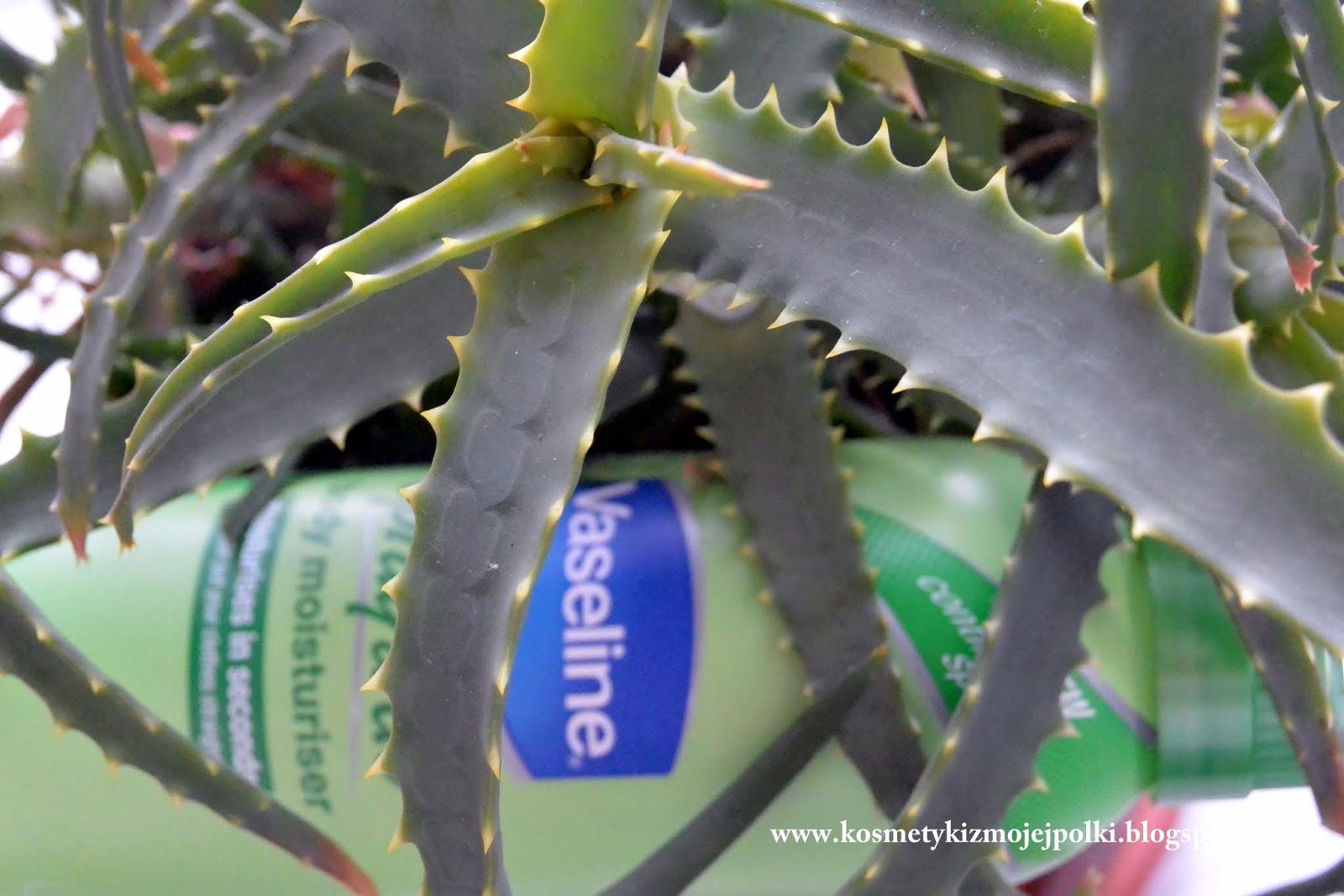 Nawilżający balsam w spray'u Aloesowe Odświeżenie od Vaseline